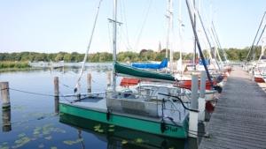 Olaf im Hafen